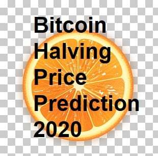 Bitcoin Halving Price Prediction