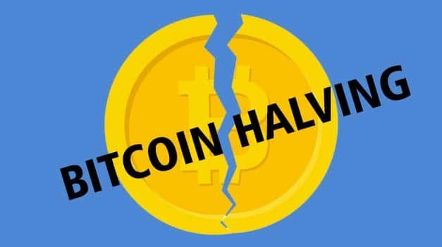 ‎Will Bitcoin Drop After Halving